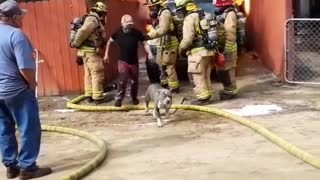 Man saves his dog from a house fire