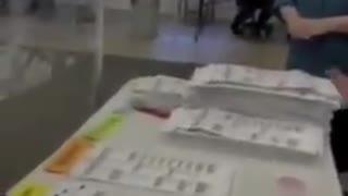 Michigan election fraud ()