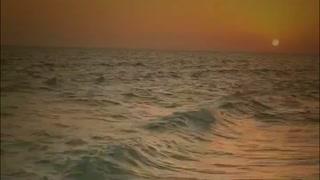 Beautiful Sun Set At Beach Edge Duck