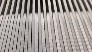 Viral Video of Verrazano Bridge Goes Viral