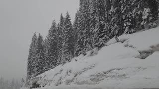Idaho & Montana