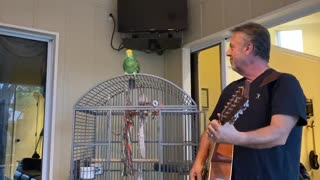 Tico Singing with the Man