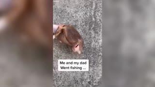 Talent shows the fishermen