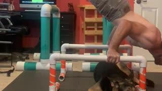 Handstand Pushups Calisthenics Training