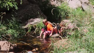 Kids playing in a mountain summer stream