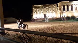 Arabian Horse dancing in Pharaonic Village