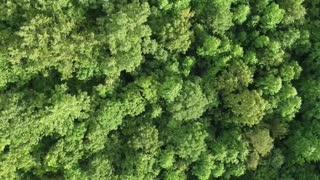 Beautiful Landscape Cinematic video