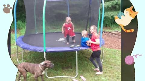 Trampoline build family fun