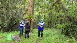 Liberan más de 200 animales silvestres, recuperados en Bucaramanga y el área 2