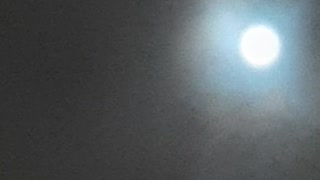 The emergence of a strange creature in the sky of Saudi Arabia