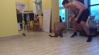 Imitation of the battle with a cat