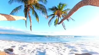 Hawaii mood