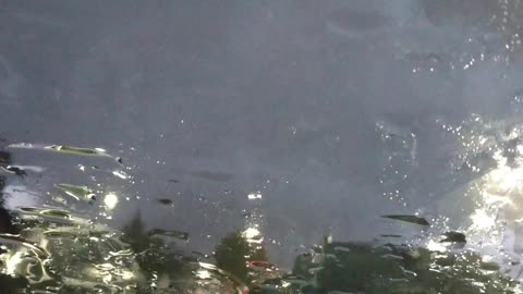 Blue lightning on the parking lot