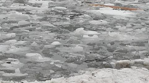 Frosty Lake Ontario