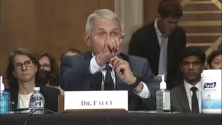 Rand Paul accuses Dr. Fauci of lying to Congress