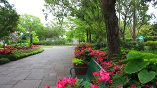 Nature Garden Scenery