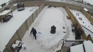 Great Dane Loves snow.