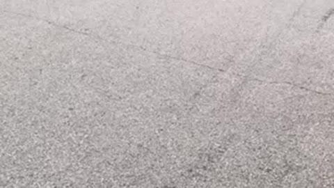 Arkansas Camaro feast curse 2021