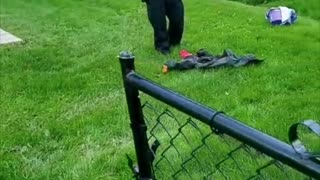Cops Rescue Themselves from Tiny Snake