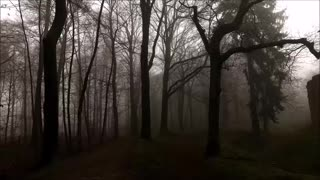 """""""The Outsider"""" By H. P. Lovecraft (Narrated By Jeffrey LeBlanc)"""