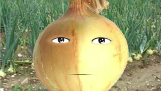 hang10 Alien surfer is an onion a vegetable?