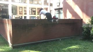 Parkour back flip results in total epic fail