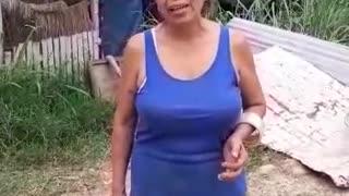Buscan apoyo para los animales en Bucaramanga