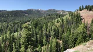 Idaho, Green and Beautiful