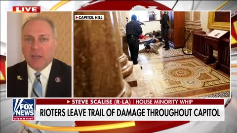 The Capitol was 'overrun by anarchists and terrorists': Scalise