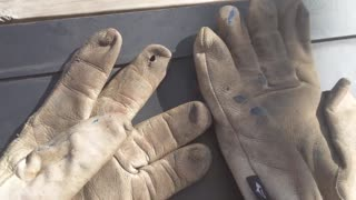 Almost Time For New Gloves