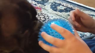 Adorable Dog's Tongue Does Funny Trick