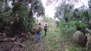 Ancient Florida Floodplain Mound with Wild Florida Adventures