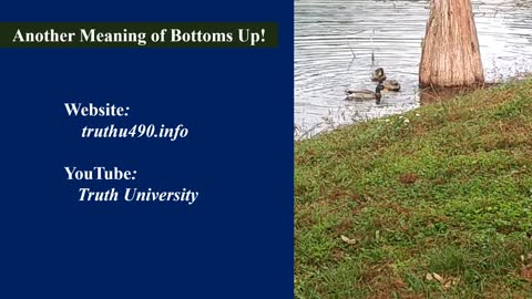 """Another Meaning of """"Bottoms Up"""""""