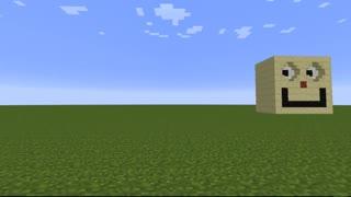 Minecraft Optical Illusions