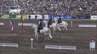 Horse show in Santiago, Chile
