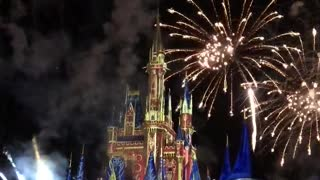 Disney World Castle Show and Fireworks