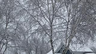 Winter again.... again....again?!
