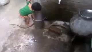 Baby Playing with real Snake