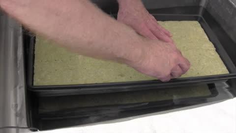 Preparing Seed Plugs for Germinating Seeds.