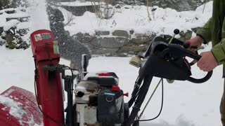 Silly Pup Plays with Snow Blower