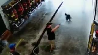 Dog, Fire Department