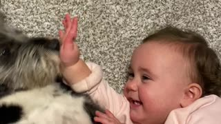 Baby and Dog Crack Each Other Up