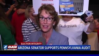 Ariz. senator supports Pa. election audit