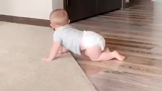 Babies First Roomba Experience
