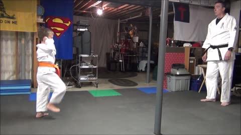 Kyokushin Henry's Blue Belt Test