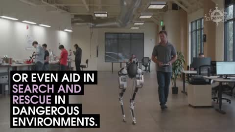 Meet Cassie, The Walking Robot Without A Body