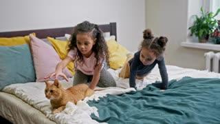 When you meet innocent children and cats