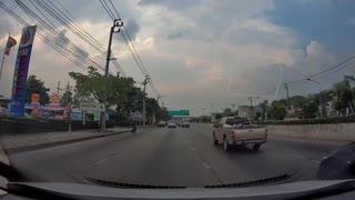 Good Samaritans Help Stray Cat on Busy Road