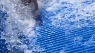 Aunty Acid Crazy Clip Show - Beach