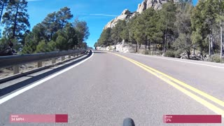 Darting Deer Causes Cycling Smash Up